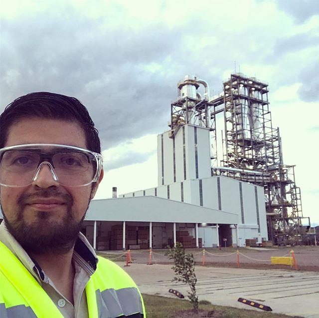 Arauco planta Durango